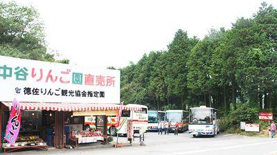 tokusa_ringo_06-thumb-400x224[1]大林園.jpg